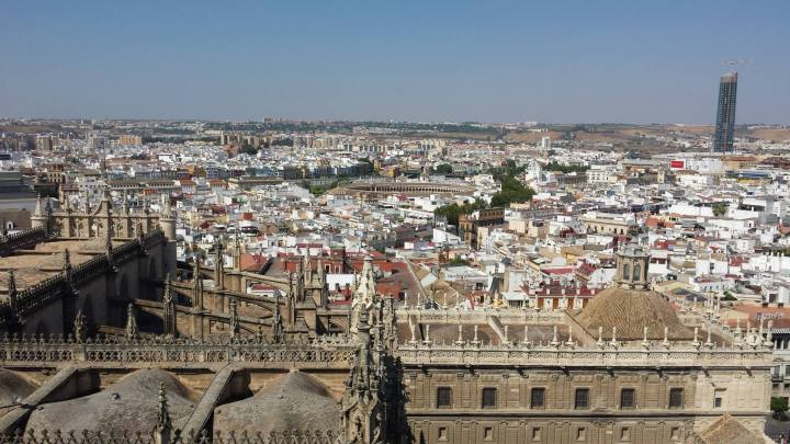 cathedral from giralda