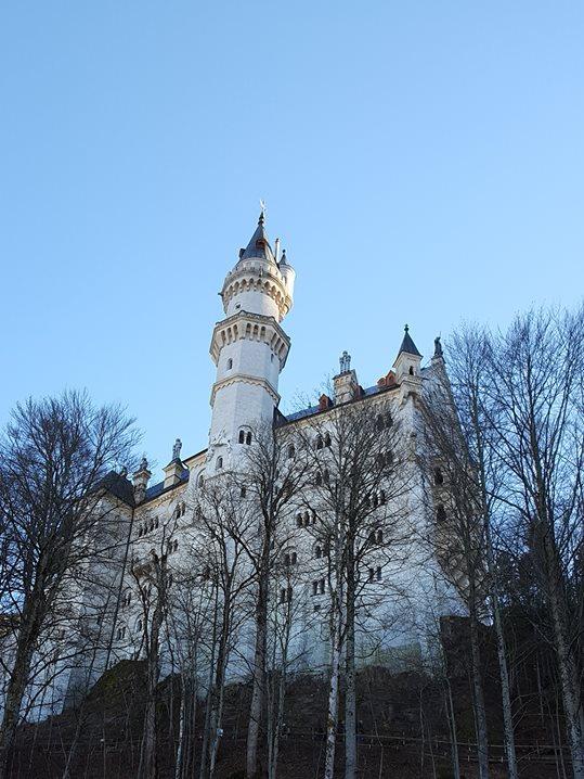 neu castle 3